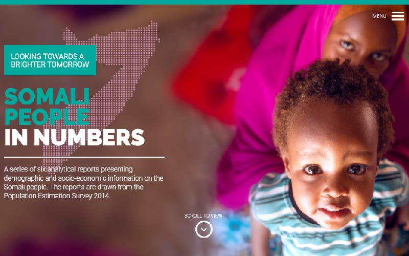 UNFPA Analytical Report